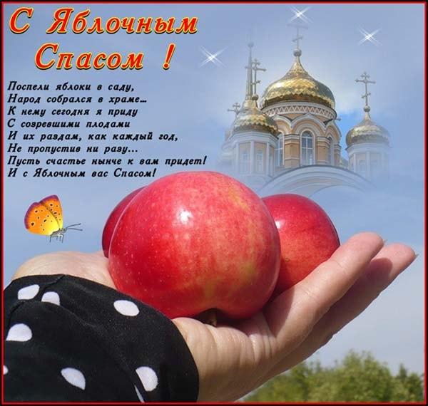 картинка поздравления с яблочным спасом_1