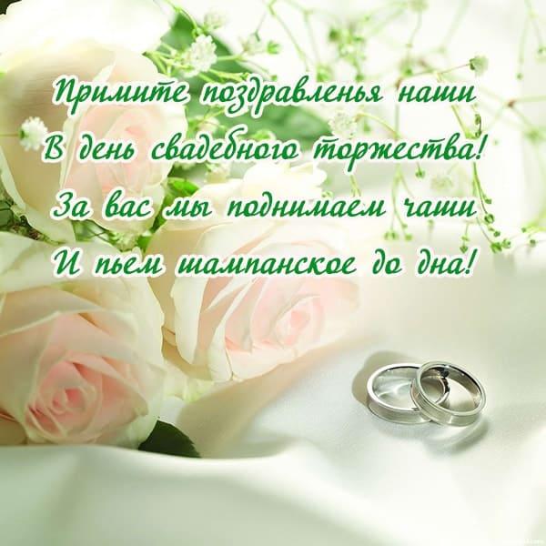 нежно розовые розы на картинке с бракосочетанием