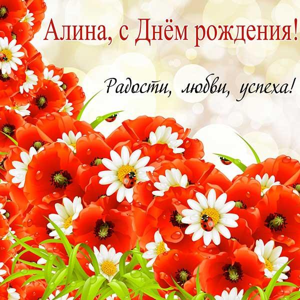 поздравления Алине_8