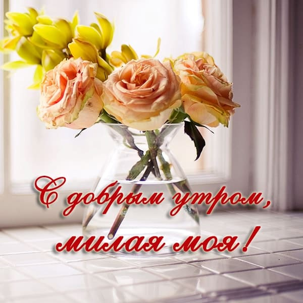 С добрым утром картинки с пожеланиями девушке_1