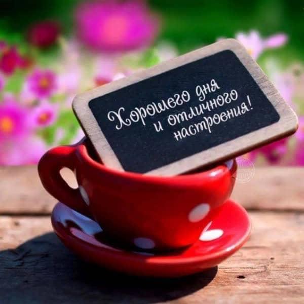 пожелание с добрым утром табличка в красной чашке