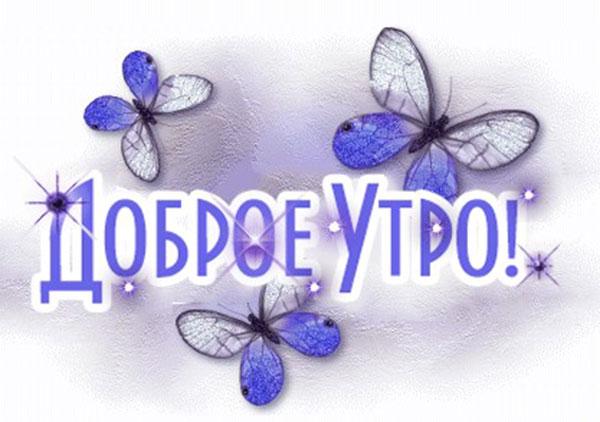 доброе утро картинка с голубыми бабочками