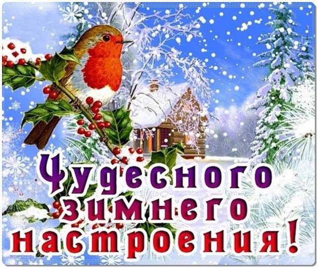 чудесного зимнего настроения