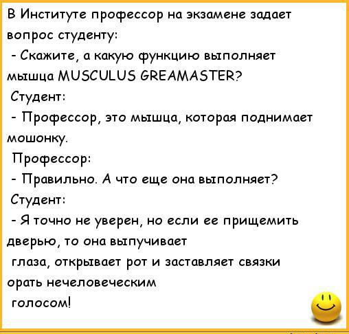 анекдоты про студентов_2