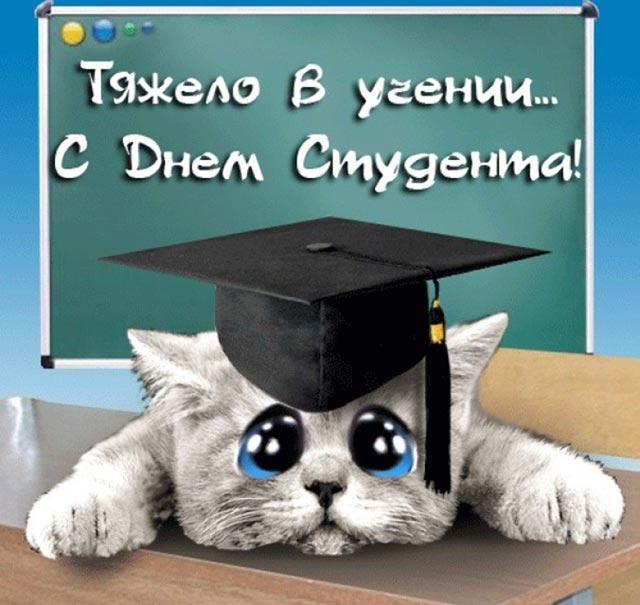 Картинки поздравления с днем студента