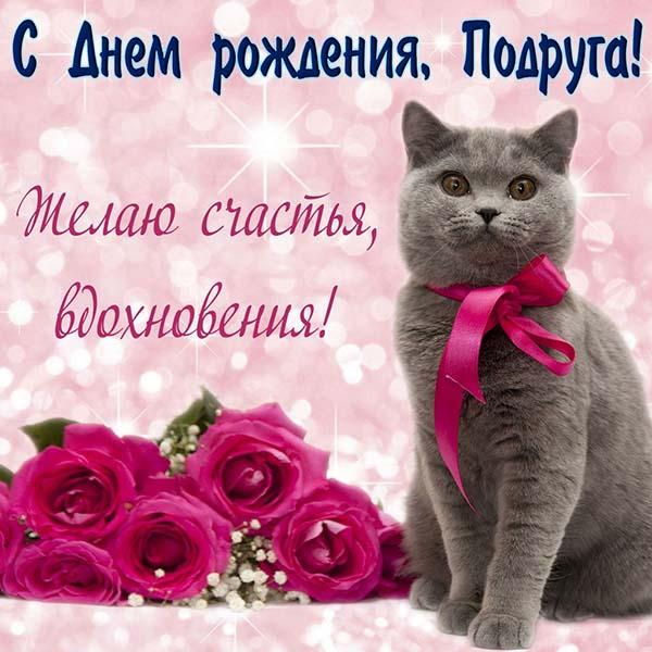 поздравление открытка на день рождения подруге с котом