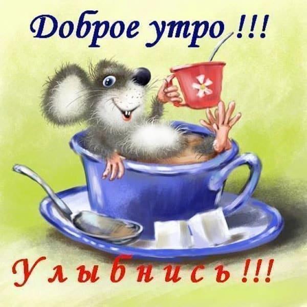 доброго утра девушке прикольная картинка_1
