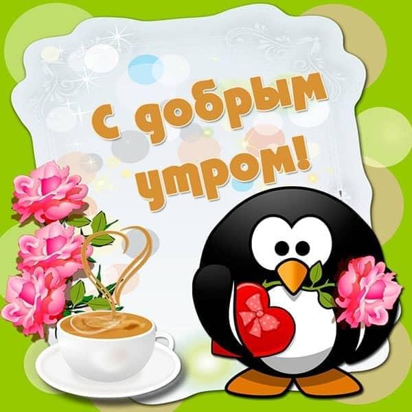 доброго утра девушке прикольная картинка_4