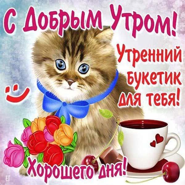 доброго утра девушке прикольная картинка_5