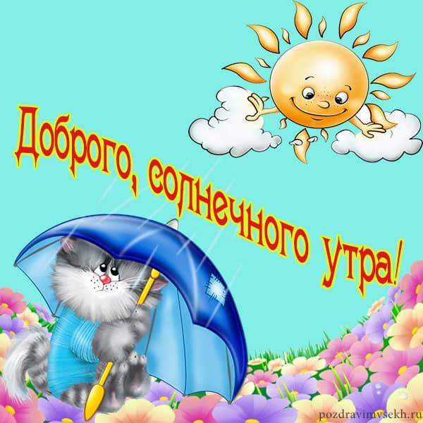 доброго солнечного утра, кот с зонтиком