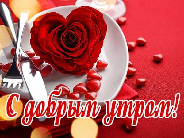 С добрым утром роза в блюдце