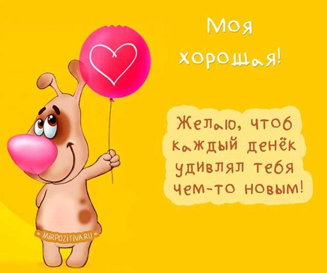 собачка с шариком с днем рождения