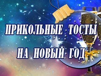 прикольные тосты на новый год